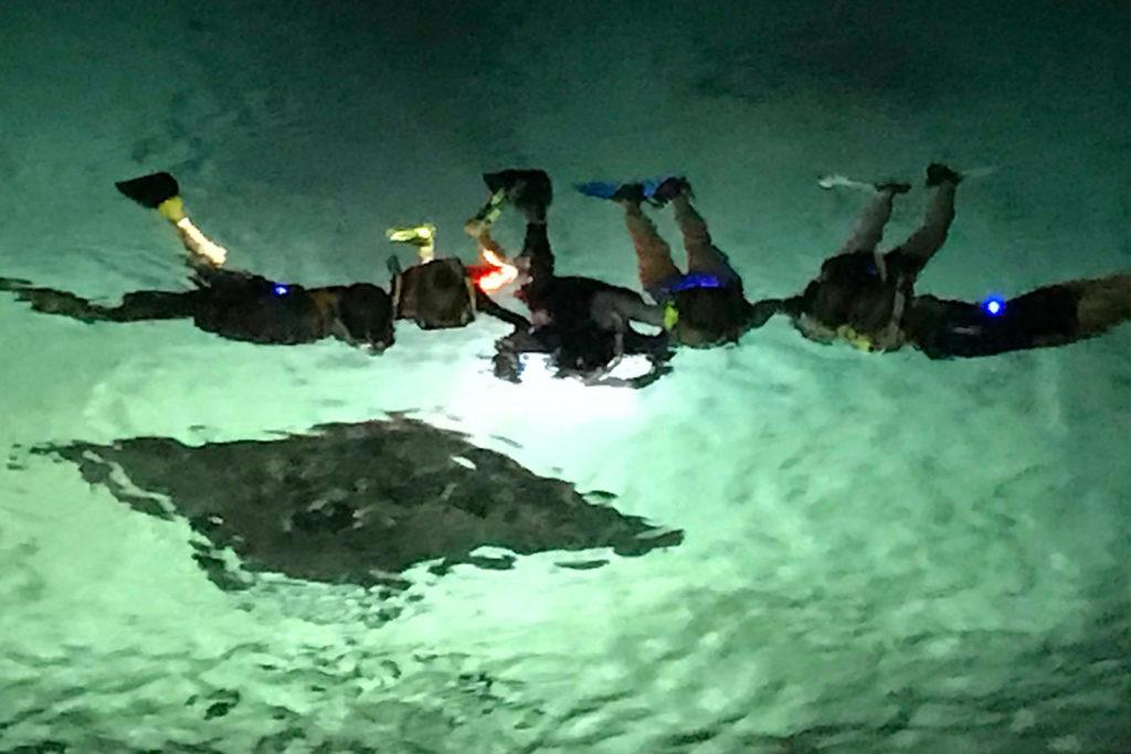Snorkel and dive with manta rays in Kona/Hawaii/Big Island